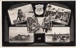C1950 GIBRALTAR - SOUVENIR OF - Gibraltar