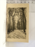 """Calendrier 1931 - 49 ANGERS - """"Aux Carmes"""" Maison R. Nicole Godefroy, Succr, 25 Rue Beaurepaire  Parapluies Maroquineri - Calendari"""