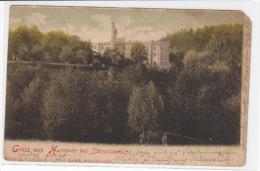 Gruss Aus Hammer Bei Schneidemühl - 1901 2.Wahl - Westpreussen