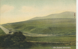 BEDS - DUNSTABLE - THE DOWNS  Bd193 - England