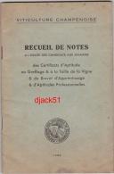 VITICULTURE CHAMPENOISE - Recueil De Notes à L'usage Des Candidats Aux Examens... 1954 - Tuinieren