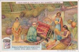 Liebig Vintage Trade Card S973 Argentine Republic No 6 Interieur D'une Cabane Indienne - Liebig