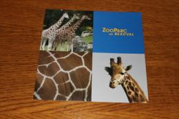 ZOO PARC DE BEAUVAL.girafes. - Saint Aignan