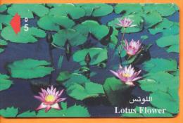 Oman - OMN-G-41E, Lotus Flowers, 50.000ex, 2/99, Used - Oman
