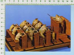 Taxidermie Suisse Musée Estavayer  ( Les Grenouilles à L´école ) Post Card Carte Postale 2 Scans - Arts