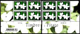 Polynésie 2013 Timbre Senteur Pitate ( Blocs De 4 BDF Numéroté Et Daté ) - Polynésie Française