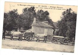 Auch Le Gers Pittoresque  Attelage Gascon  De Boeufs  CPA 32 Animée Texte Patois - Auch