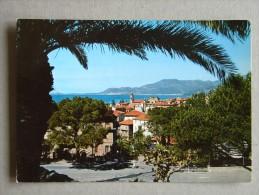 Im1212)  Bordighera - Riviera Dei Fiori - Scocio Panoramico Tra Le Palme - Imperia