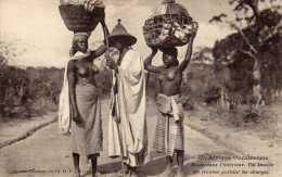 Afrique Occidentale: Un Diola Et Ses Femmes, Seins Nus, Collection Fortier N°527, Non Voyagée, Vendue En L´état. - Sénégal