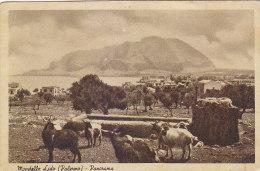 E810- Mondello Lido - Palermo - Panorama - Abbeveratoio Capre - F.p. Non Vg. - Palermo