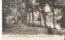 63 Chambon Le Lac  Les Jolies Rives Arbres - Autres Communes