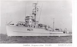 Batiment Militaire Marine Nationale M 671 Camelia Dragueur Cotier 7-9-1972  Proue  Equipage  Marius Bar - Guerre