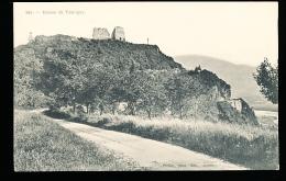 74 FAUCIGNY / Les Ruines / - Faucigny