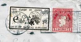 EIRE Ireland 1938, Seltene 2 Fach-Frankierung Auf Brief Gelaufen Nach München - 1937-1949 Éire