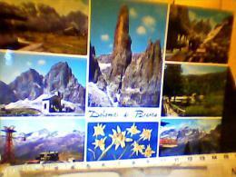 DOLOMITI DEL BRENTA VEDUTE E STELLE ALPINE V1976  EG1436 - Trento