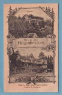 GRUSS Aus HEIGENBRÜCKEN, Hotel HOCHSPESSART - SELTEN - E. Sauerwein Nachf. (Fr. Mayer) Aschaffenburg - Ohne Zuordnung