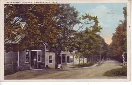 ETATS UNIS - NY - NEW YORK - Main Street, Purling, CATSKILL MTS - D10 - Catskills