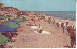 ETATS UNIS - Cpsm OCEAN CITY - Beach Scene - D1 7 - Ocean City