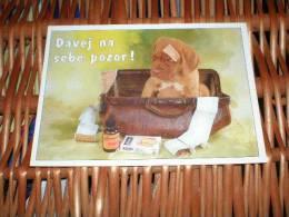 Hund Dog Chien Bordeaux Dogge  Postkarte - Dogs