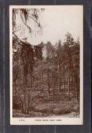 41601     Regno   Unito,     Cofton  Woods  -  Barnt  Green,  NV(scritta) - London Suburbs