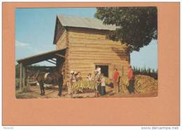 Thomasville USA ( Stringing Tobacco At Harvest Time Attachage Des Feuilles De Tabac ) Post Card Carte Postale  2 Scans - Cultures