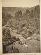 Résurgence De Martinvaux Et Paturage Du Jura , édition Bong , Circa 1911 - Documents Historiques