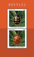 Nevis-2013-insects-BEETLES - Marine Life