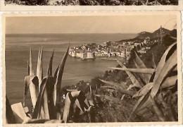 Dubrovnik-yougoslavie-cpsm - Yugoslavia