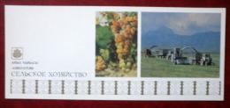 Agriculture - Grape - Tractor - 1984 - Kyrgystan USSR - Unused - Kirghizistan