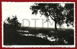 CORUCHE - VISTA PARCIAL - BAIRRO LUIS ALBERTO DE OLIVEIRA - 1950 REAL PHOTO PC - Santarem