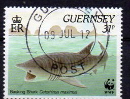 GUERNSEY 1990 Marine Nature 31p Used - Guernsey