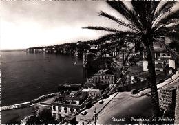 2548.   Napoli - Posillipo - Napoli (Naples)