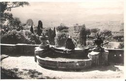 LAZ80 - FRASCATI : Villa Aldobrandini -  Fontana Del Bernini - Italia