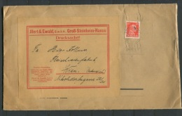 Germany 1928 Large Cover To Viena Single Usage - Germany