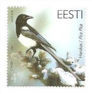 Estonia / Estland - Magpie Bird Stamp 2003 MNH - Estland