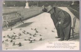 Paris Vécu . Le Charmeur D'oiseaux Aux Tuileries . La Cocotte Valentin . - Petits Métiers à Paris
