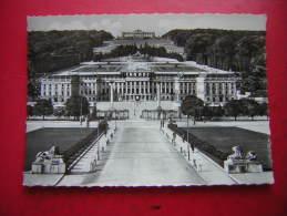 CPSM PHOTO  AUTRICHE  WIEN VIENNA  VIENNE  CHATEAU DE SCHOENBRUNN  NON VOYAGEE CARTE EN BON ETAT - Château De Schönbrunn