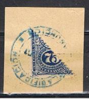 PAR 52** YVERT 191 (COUPÉ EN DEUX  SUR FRAGMENT, ARMOIRIES** 1910-18** OBLIOTÉRÉ - Paraguay
