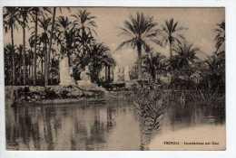 Tripoli - Inondazione Nel Oasi - Souvenir De Tripoli - Libye