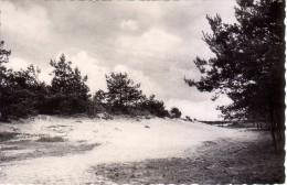 Kasterlee  -  Lichtaart  -  Regina Pacis  -  Kampeerterreinen  -  1959 - Kasterlee