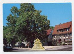GERMANY - AK 172838 Bad Lauterberg - 475 Jähr. Linde - Bad Lauterberg