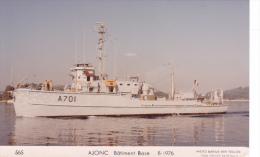 Bateau Marine  Militaire France Ajonc Batiment Base 8-1976 Couleur  Marius Bar + Equipage - Guerre