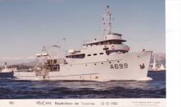 Bateau Marine  Militaire France  A 669 Pelican Repecheur De Torpilles  13-10-1980 Couleur  Marius Bar + Equipage - Guerre