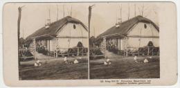 Poland - Krieg 1914-15 - Polonisches Bauernhaus Von Deutschen Soldaten Geschmuckt - Stereoscopische Kaarten