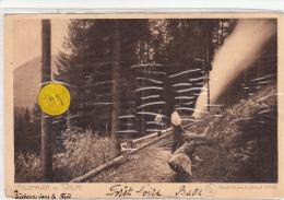 CPA-49 -Allemagne - Zu Orten - Holzfäller Im Schwarzwald -Envoi Gratuit - Ohne Zuordnung