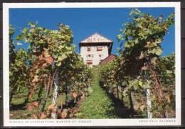 Altstaetten , Schloss - SG St. Gall