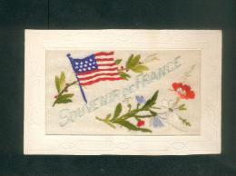 Carte Brodee - Souvenir De France ( Drapeau Américain U.S.A. Fleurs Aux Couleurs Du Drapeau Français Patriotique - Embroidered
