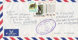 Ethiopia 2007 White Tailed Swallow Endemic Bird Cover - Swallows