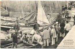 44. Le Croisic. Débarquement De La Sardine - Le Croisic