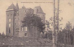 Cp , 42 , NOIRÉTABLE , Château De La Croix De Guirande - Noiretable